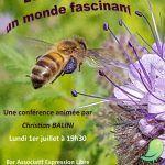Les abeilles, un monde fascinant