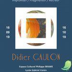 Exposition Didier GAULON