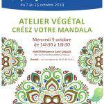 Atelier Végétal - créer votre Mandala