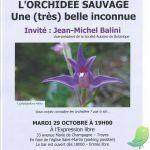 Tapis rouge: les orchidées sauvages