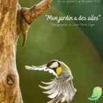 Exposition « Mon jardin a des ailes »