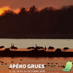 Escapade naturaliste : Apéro Grues