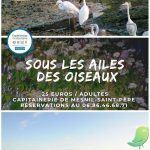 """Sortie ornithologique """"sous les ailes des oiseaux"""""""