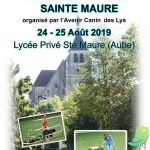 Concours d'attelage canin