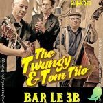 Concert The Twangy & Tom Trio