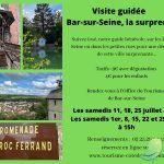 Visite guidée : Bar-sur-Seine, la surprenante