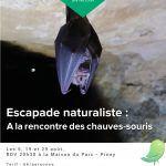 Escapade naturaliste : A la rencontre des chauves-souris