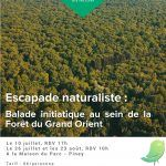 Escapade naturaliste : Balade initiatique au sein de la forêt du Grand Orient