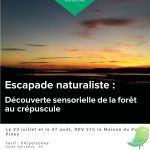 Evasion nature : Découverte sensorielle de la forêt au crépuscule