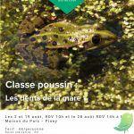 Classe Poussin : Les dents de la mare