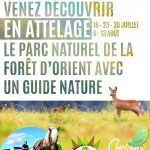 Attelage et nature