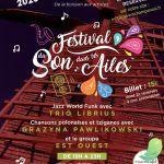 Festival du Son dans les Ailes