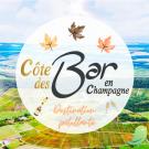 Pendant les vacances, je visite la Côte des Bar en Champagne