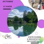 Bar-sur-Seine, la surprenante