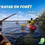 Kayak en Forêt immergée