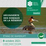 A la découverte des oiseaux de la réserve