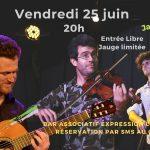 Concert de Jazz Manouche