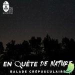 En quête de nature: balade crépusculaire en forêt d'Orient