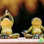 Réveil corporel : yoga & méditation