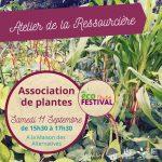 Atelier Ressourcière : Association de plantes